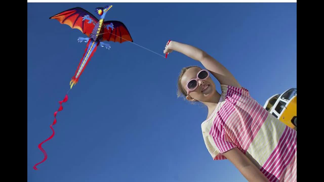 3D Inflatable Frog Kite