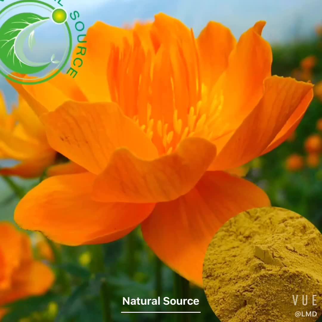 자연 식물 사 acicularis Rich In Vitamin C Saponions Rose Hip 추출물 10:1