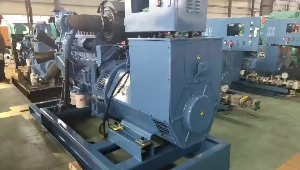 Low fuel consumption 200kW natural gas generator unit price/CHP  250kVA nature gas generator for sale