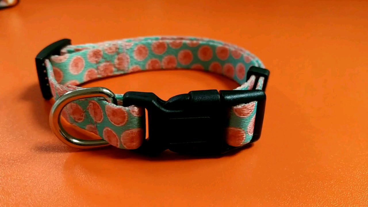 Clear personalized custom logo pet safety accessories DIY decorative dog collar colorful pattern