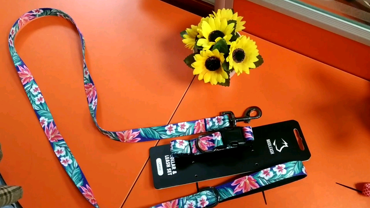 Perfect length great for walks and training traffic print dog collar and leash wholesale