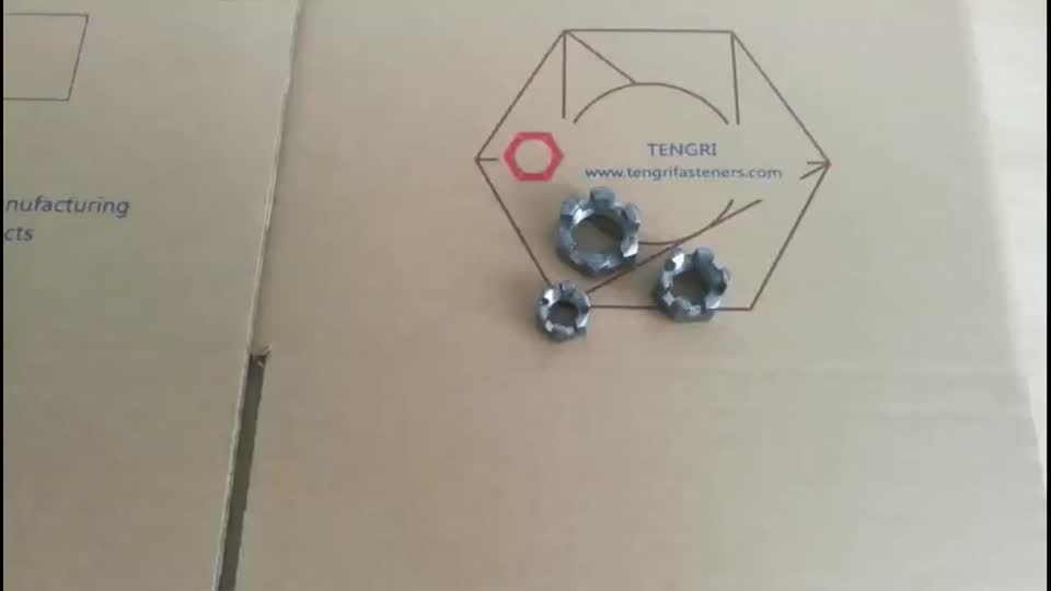 Supply wholesaler stainless steel Hexagon slotted and castle nuts