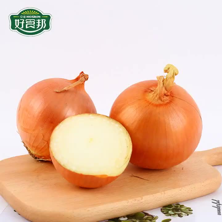 New Crop Fresh Yellow onion for eating or wholesale