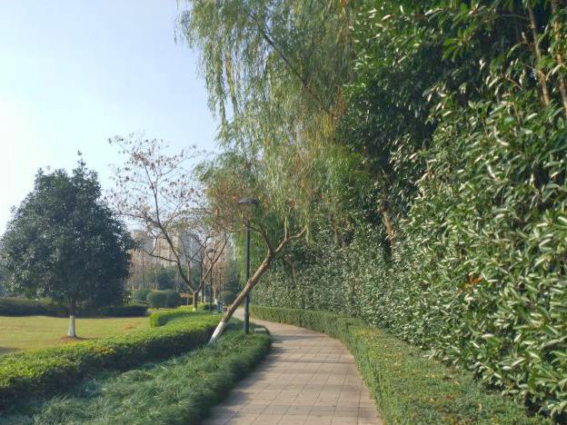海之滨公园
