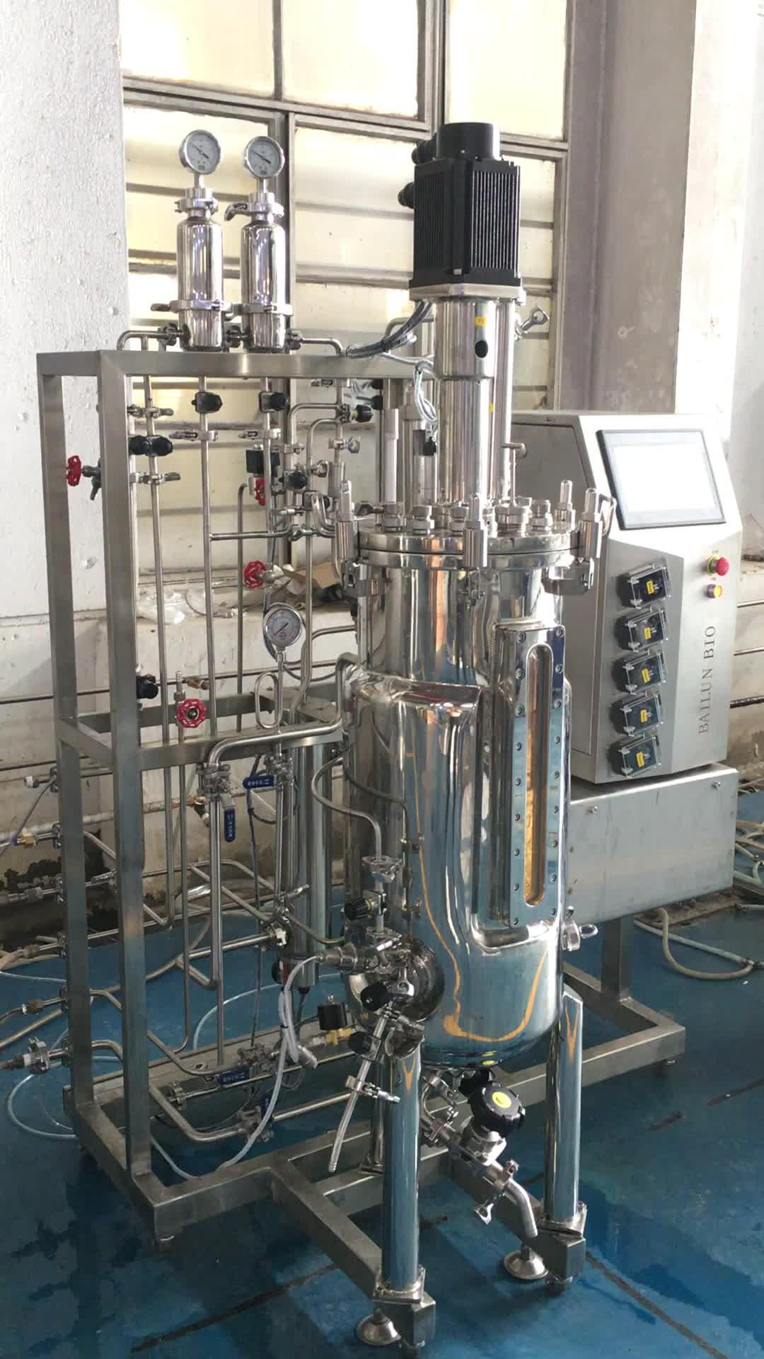 ミニ冷蔵庫発酵とキルワイン酵母、馬後肢ガット発酵槽、ブラウン発酵槽