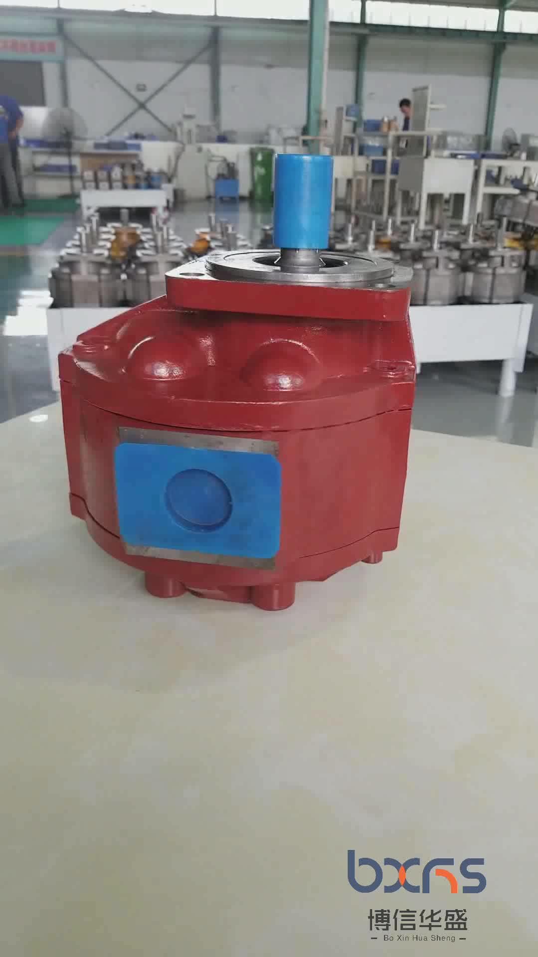 유압 로터리 기어 오일 펌프 낚시 보트
