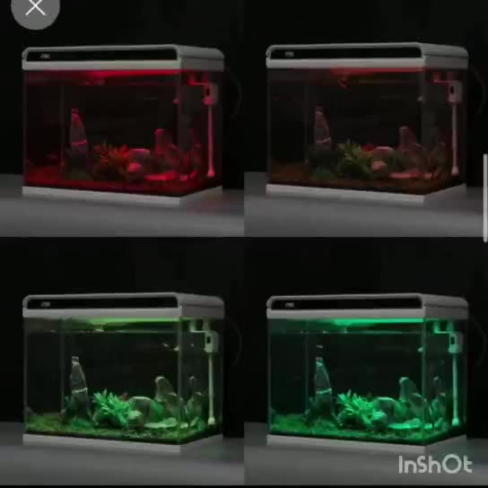 Factory sales Ultra Clear Glass Aquarium Fish Tank with LED light and filtration
