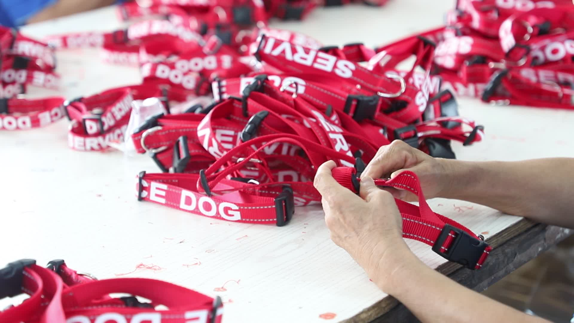 Customized Silk Printing Emotional Support Animal Pet Collar And Leash SERVICE DOG COLLARS
