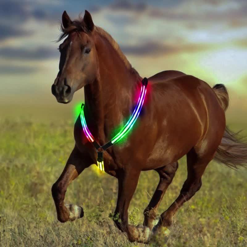 Led lampeggiante di sicurezza cavallo da sella cablaggio per progetto di horse harness