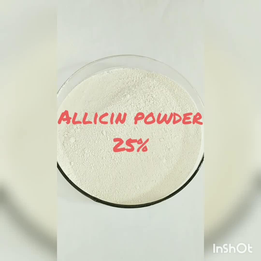 Allicin порошок 25% кормовых добавок чесночный порошок