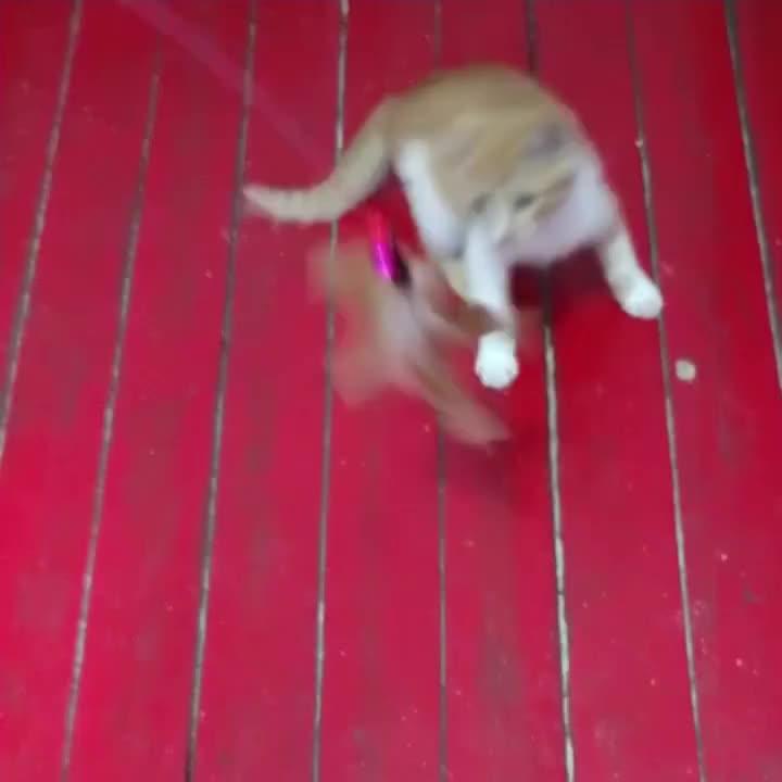 8 cabeças substituível qualidade engraçado brinquedo teaser gato com retrátil bastão de plástico