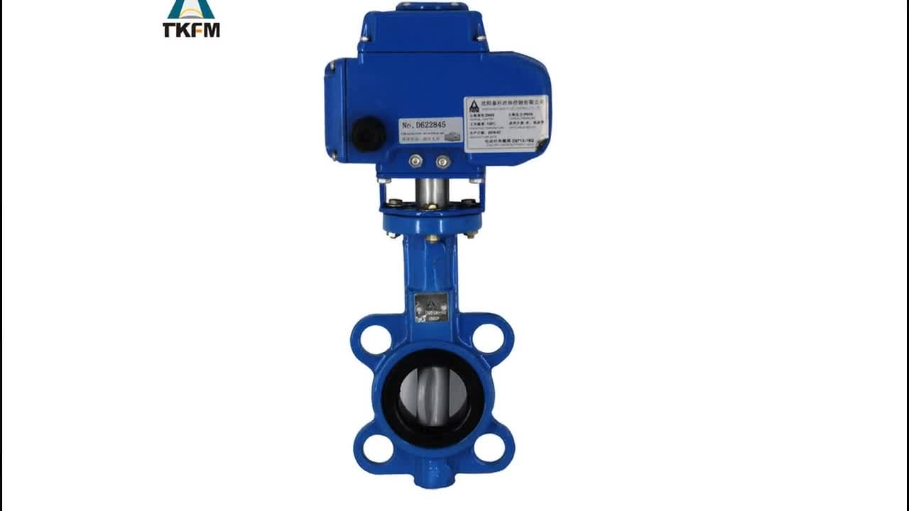 China supplier motorised ductile iron seat 2 inch dn50 pn16 wafer type butterfly valve electric