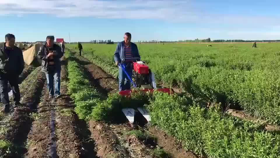 4G90 peru hot sale mini tractor mini corn harvester for sale machines for wheat crops
