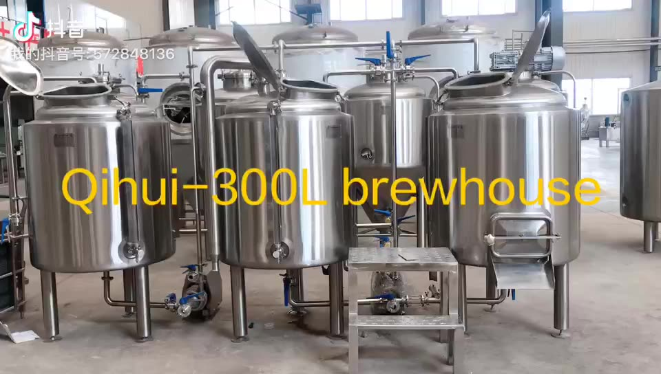 home micro brewery equipment 300L