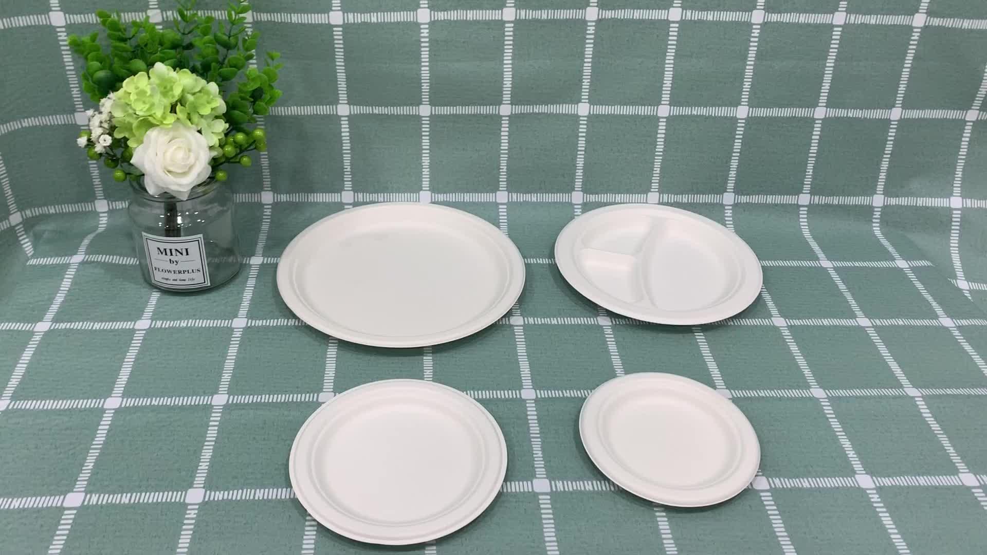 การออกแบบที่กำหนดเองย่อยสลายได้ทิ้งรอบ/รูปไข่กระดาษแผ่นและถาดย่อยสลายได้บนโต๊ะอาหาร