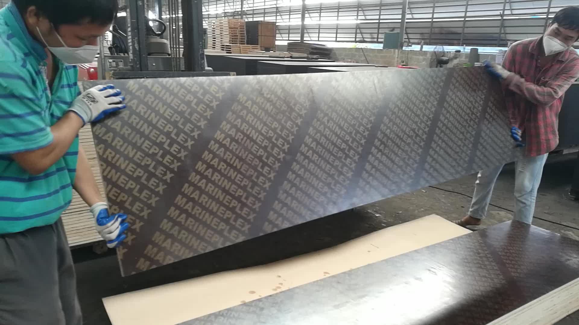Hardwood concrete plywood  China plywood