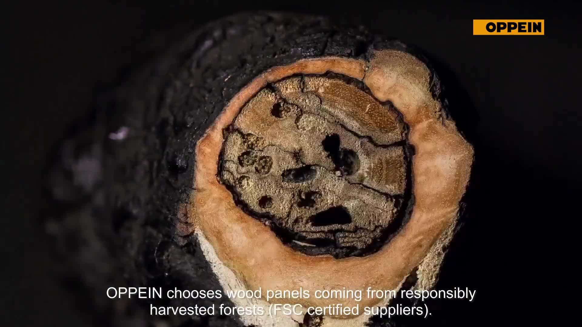 OPPEIN 내장 나무 가구 디자인 통합 부엌 캐비넷