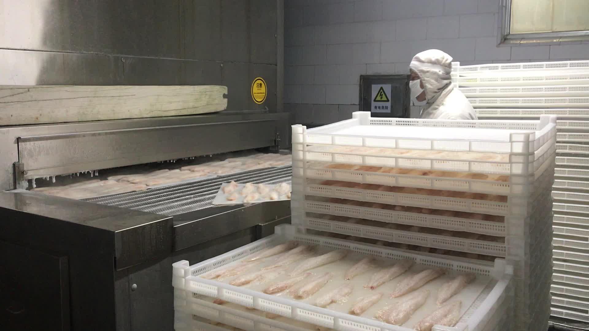frozen cod Fillet 2-8OZ, frozen cod