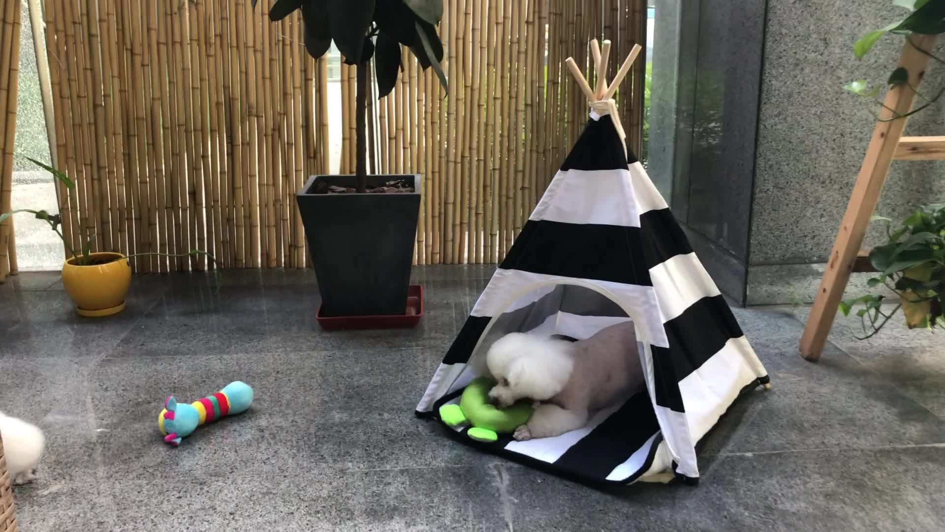 Cotton Canvas Dog Teepee Bed Children Play Tent Foldable Folding Dog House