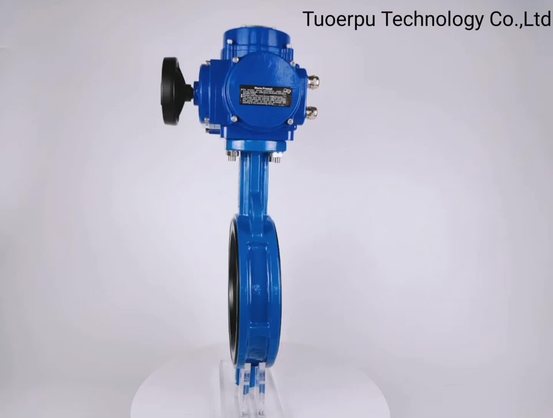 Màu xanh 120 thiết bị truyền động điện cộng với DN100 kẹp bướm kẹp van động cơ điện