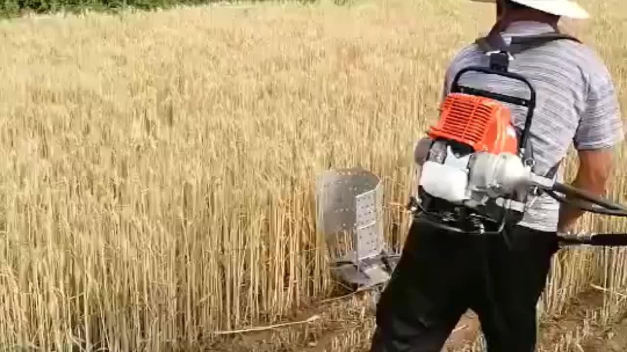 52cc Rice Cutter Machine Mini Paddy Rice Harvester Price
