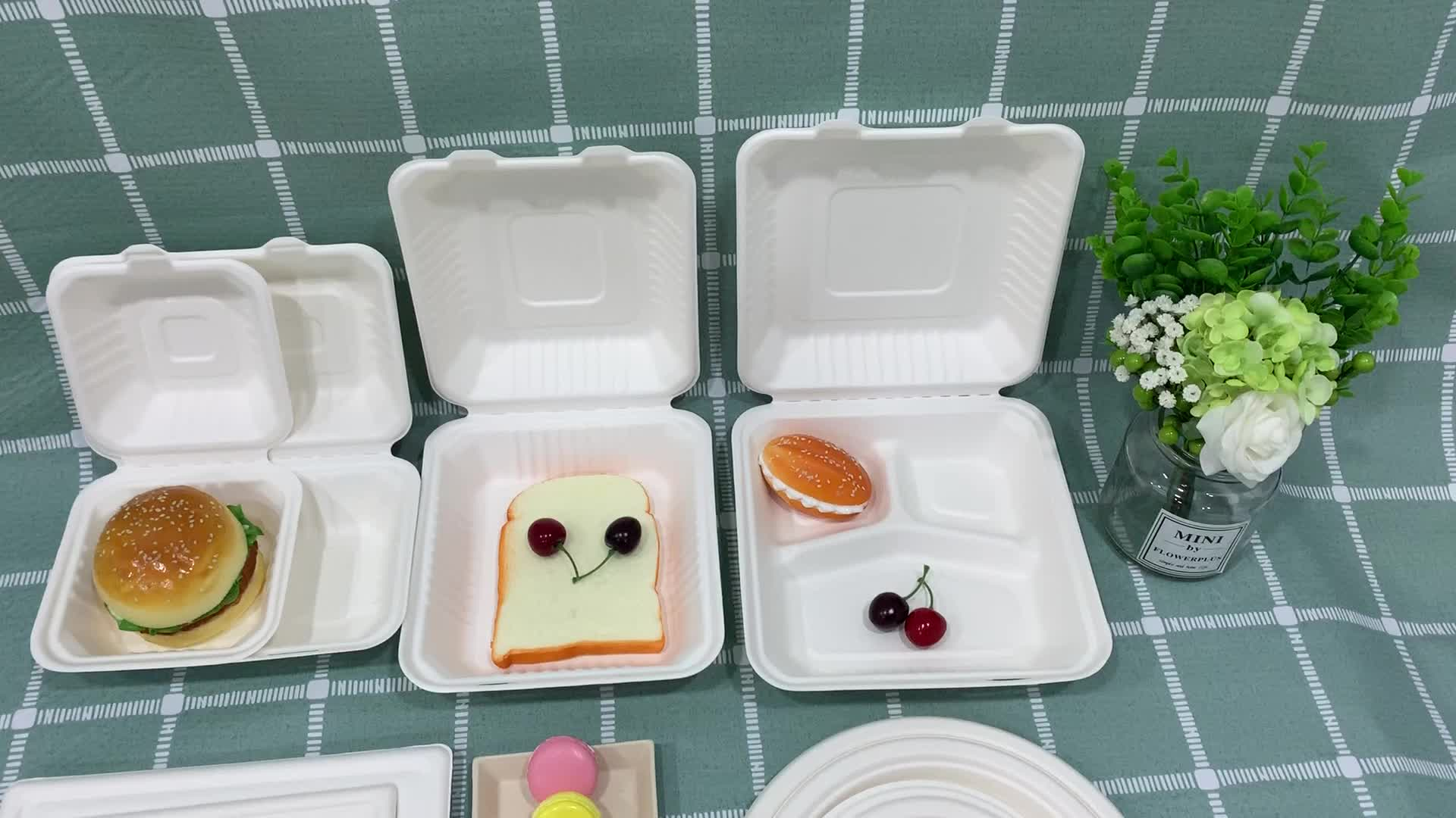 Sugarcane Bagasse Big tray Disposable Food Container Biodegradable food container