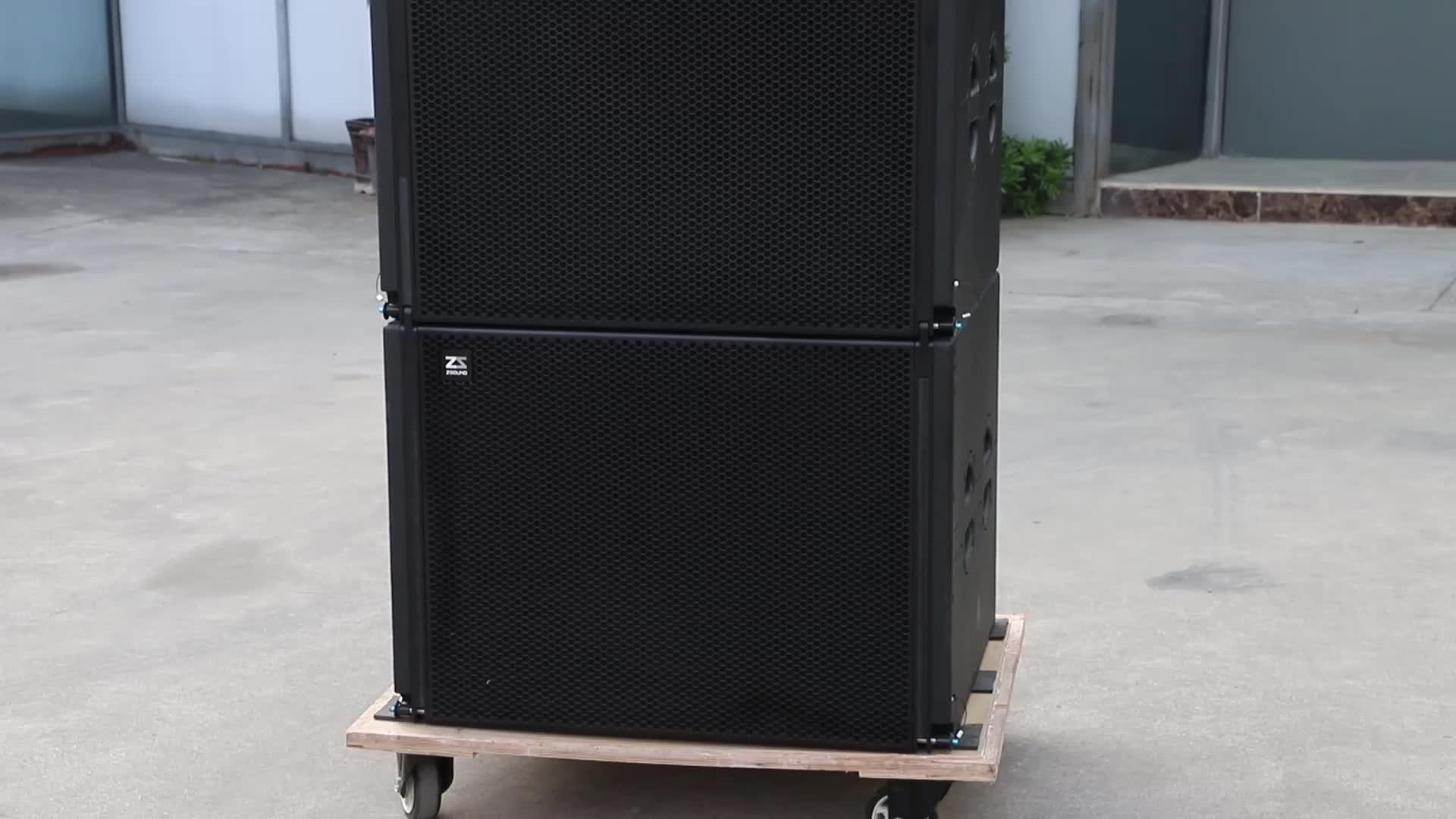 Passif P audio haut-parleurs système double 10 pouces subwoofer haut-parleurs de scène pour le tourisme et l'église