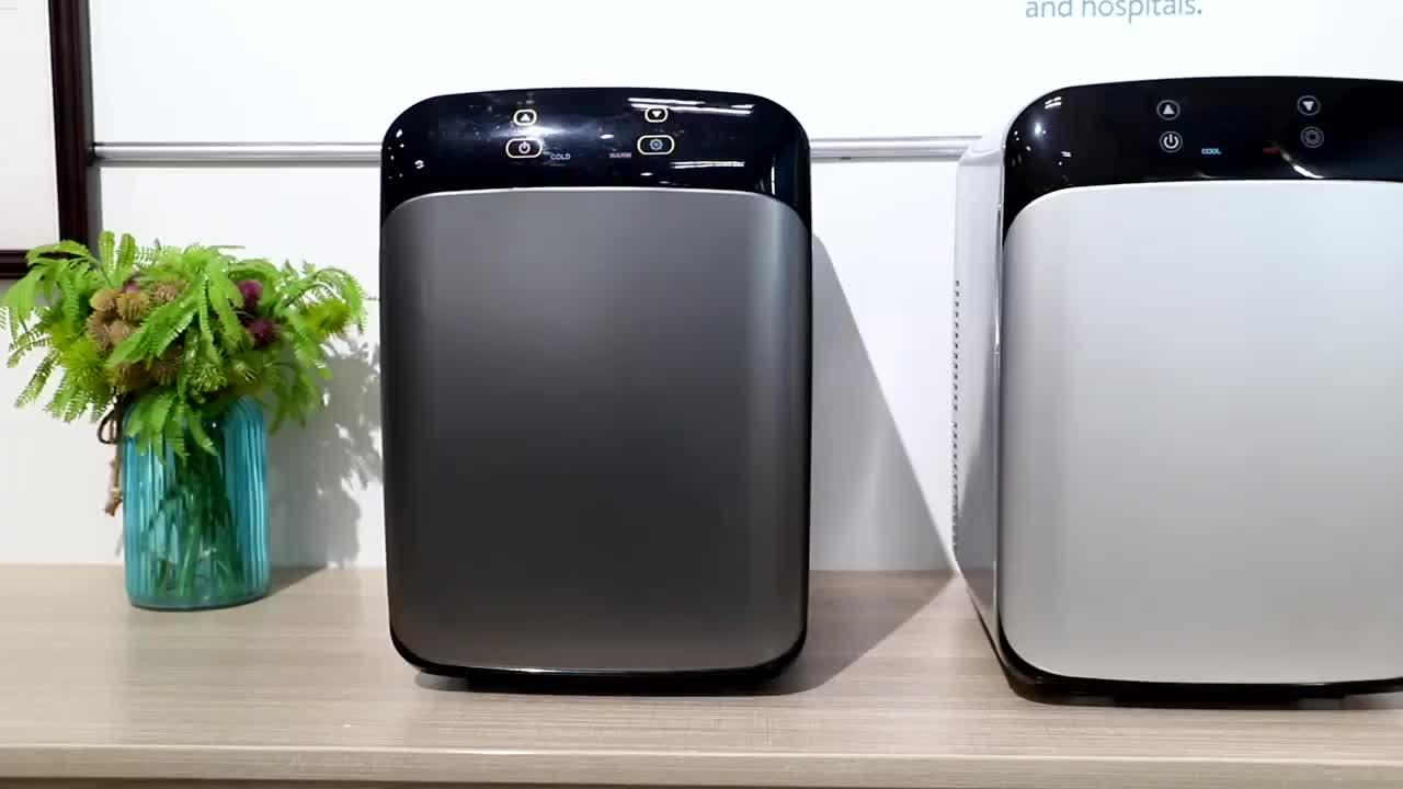 Amazon Hot 10L DC 12V AC 110V 230V Mini Fridge Custom Mobile Home Cold Drink Mini Refrigerator