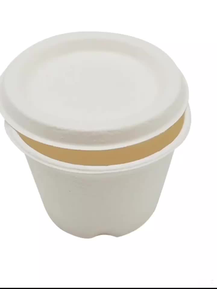 Biodegradable Compostable Sugarcane Bagasse Cups With Lid