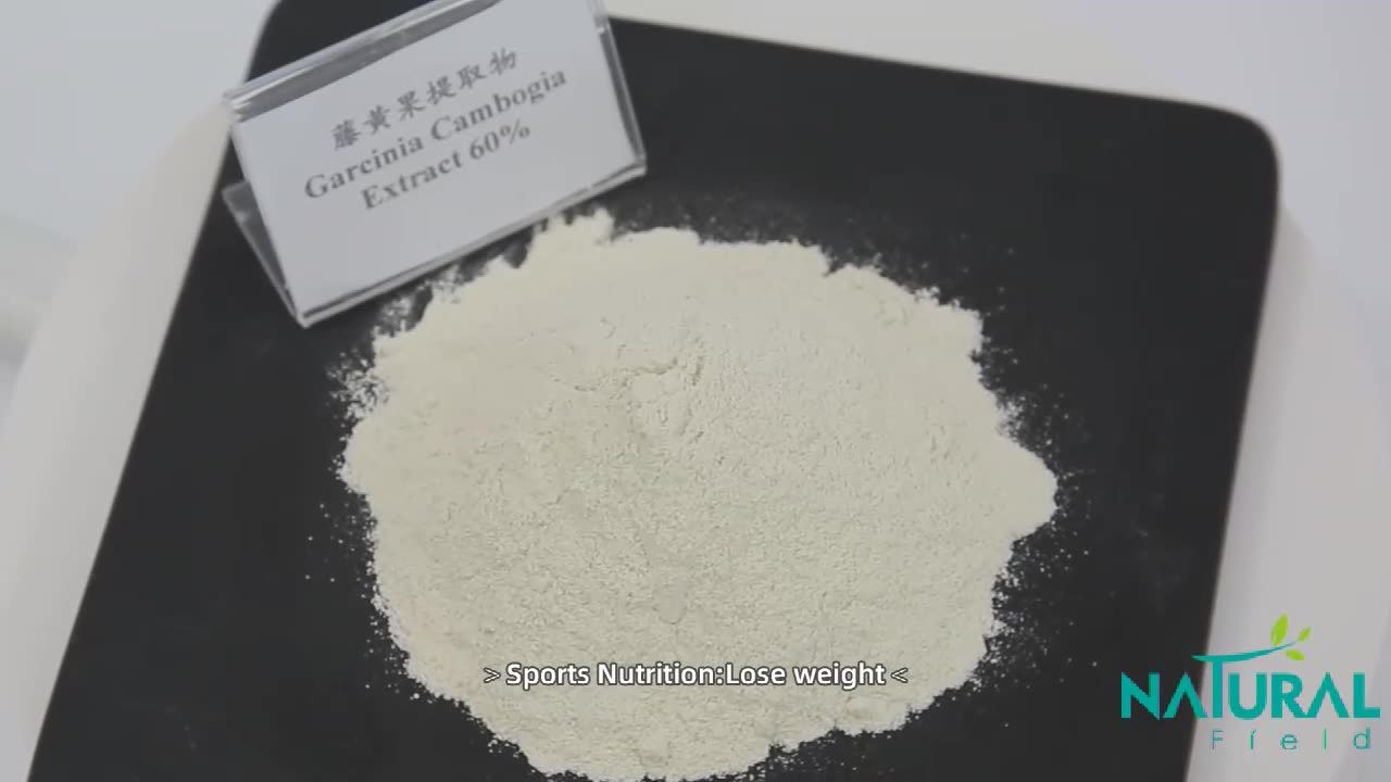 High quality Lose weight herbal extract Hydroxycitric Acid HCA garcinia cambogia extract powder