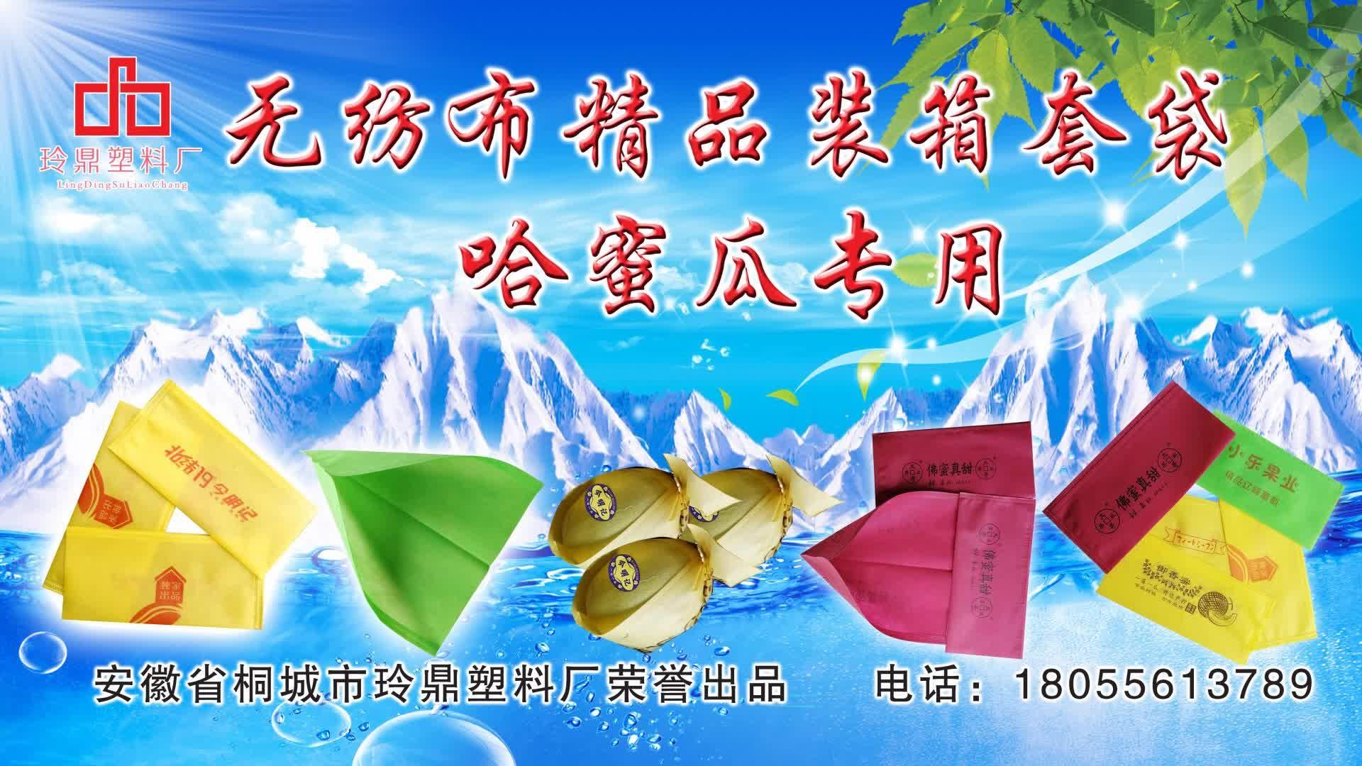 订做水果套袋 葡萄套袋葡萄袋防鸟防水防虫专用果袋育苗套袋现货