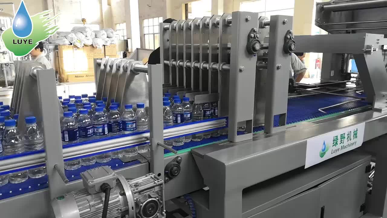 Automatic Bottle PE Film Shrink Packing machine/Wrapping Machine