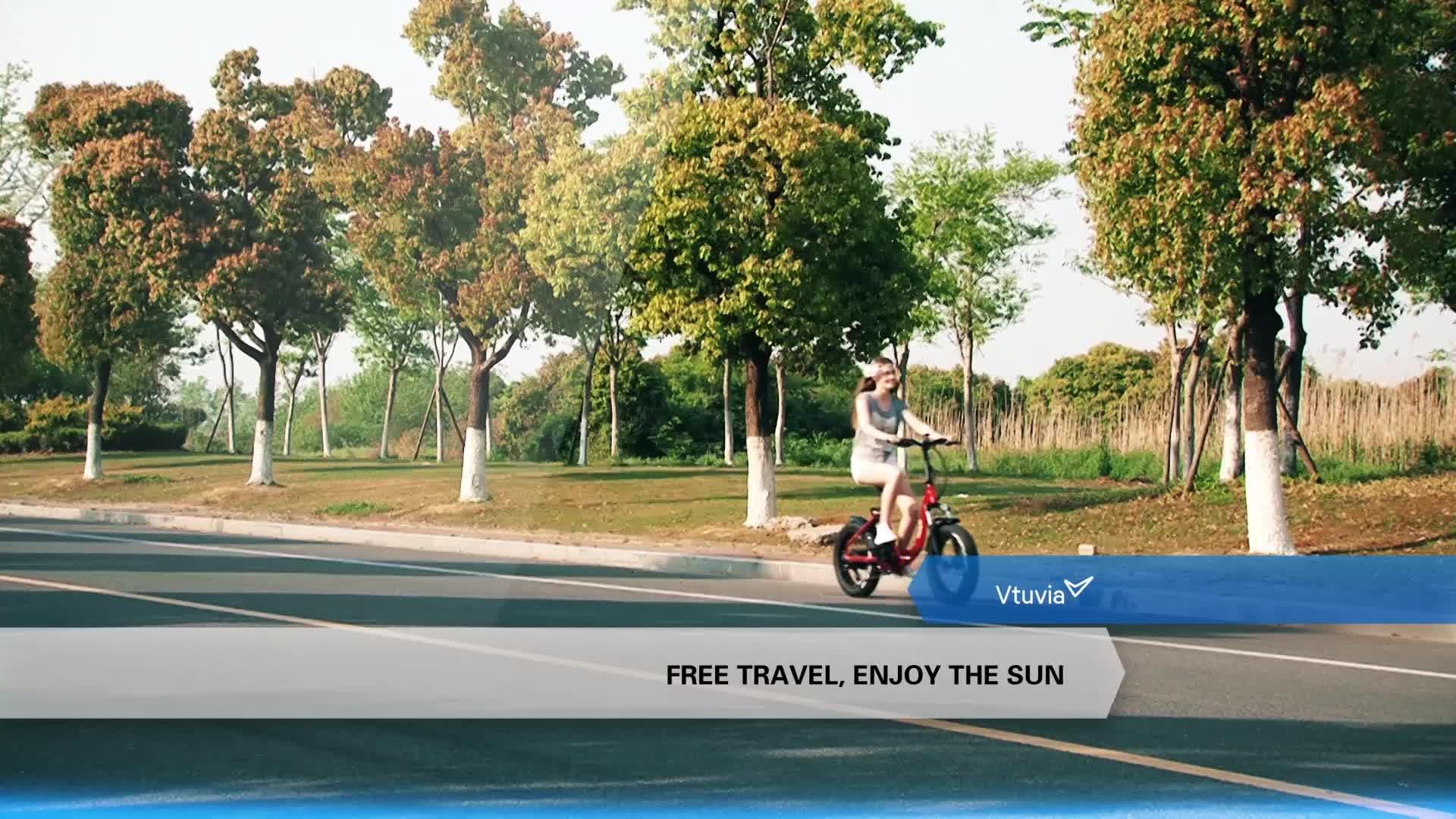 20 Inch 48V 350W/500W/750W Step-through Fat Tire Folding Electric Bicycle (V-SF20)