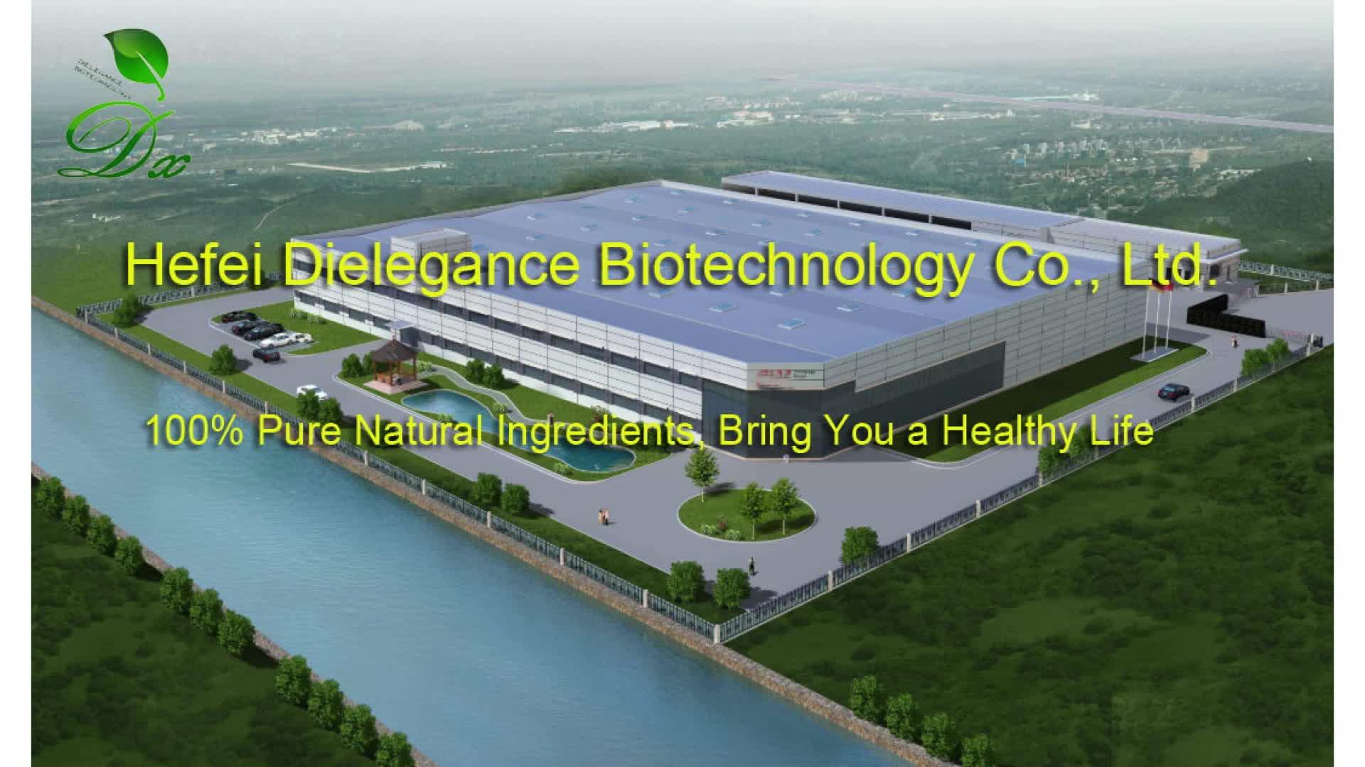 工場供給天然植物精油ヒソップのための抗菌