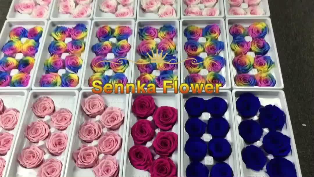 Yunnan Sennka Preço de Fábrica Preservada Preservada Rosas Do Equador Atacado Rose para Dia Dos Namorados 2020