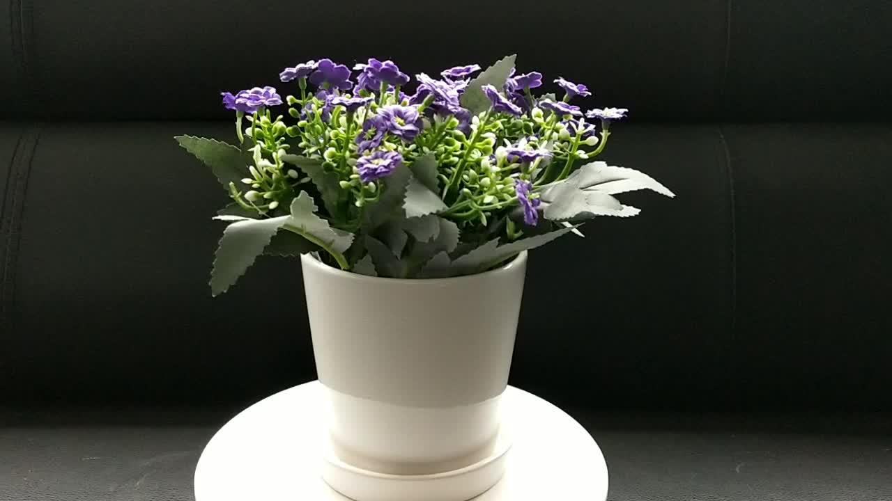 Goedkope Witte Kleine Ronde Mini Keramische Plant Bloem Pot 4 Inch Pot
