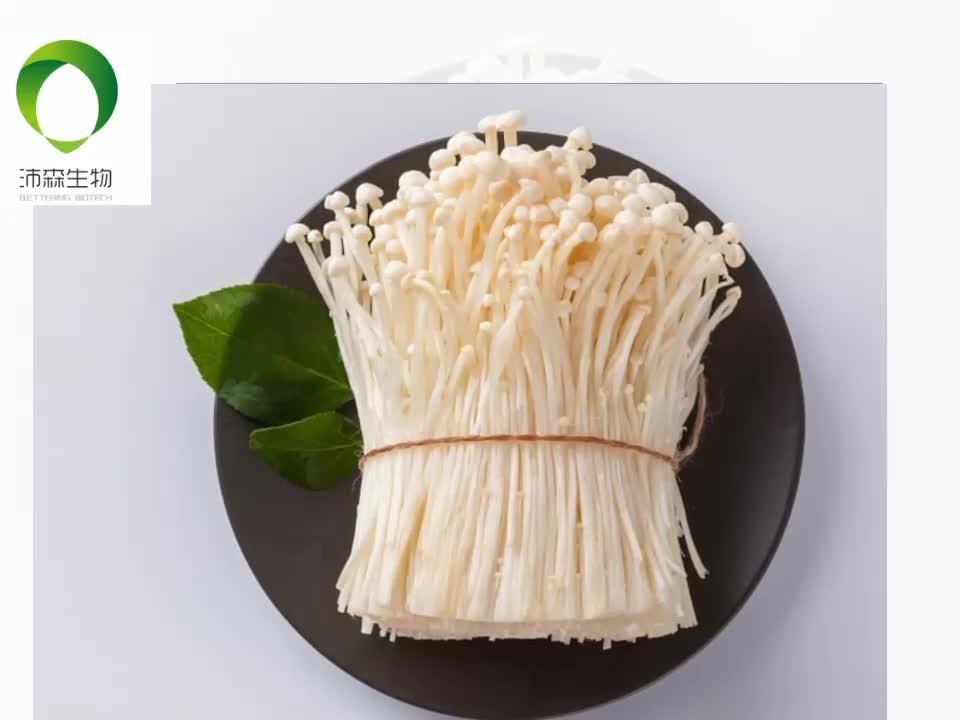 China supply coriolus versicolor extract polysaccharide peptide powder