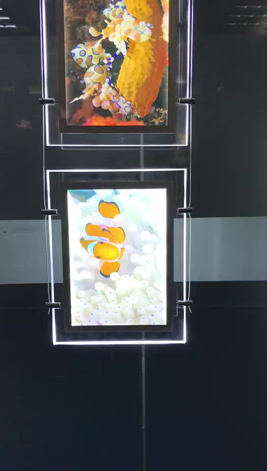 A3 Acrylic Illuminated LED Cable Suspended Real Estate Advertising Window Display LED Light Pockets Light Box
