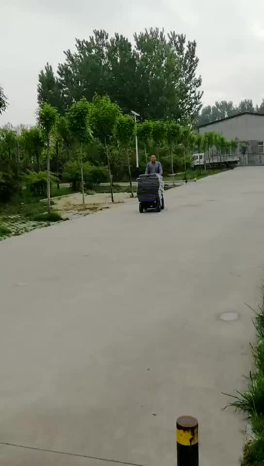 New Designed Electric Trolley for Transit Goods in Warehouse of Logistics Company