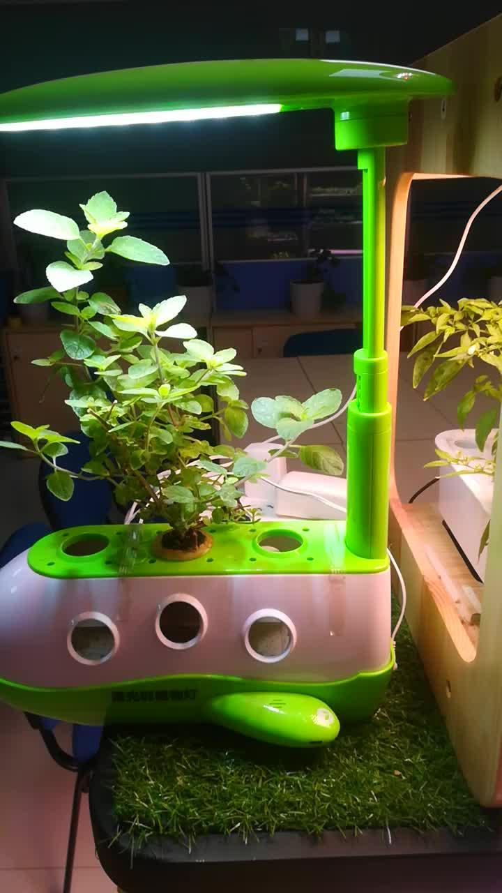2018 Shenzhen 4 tier rack spettro completo dell'interno verticale sistemi di coltivazione idroponica serra per piante a foglia di lattuga