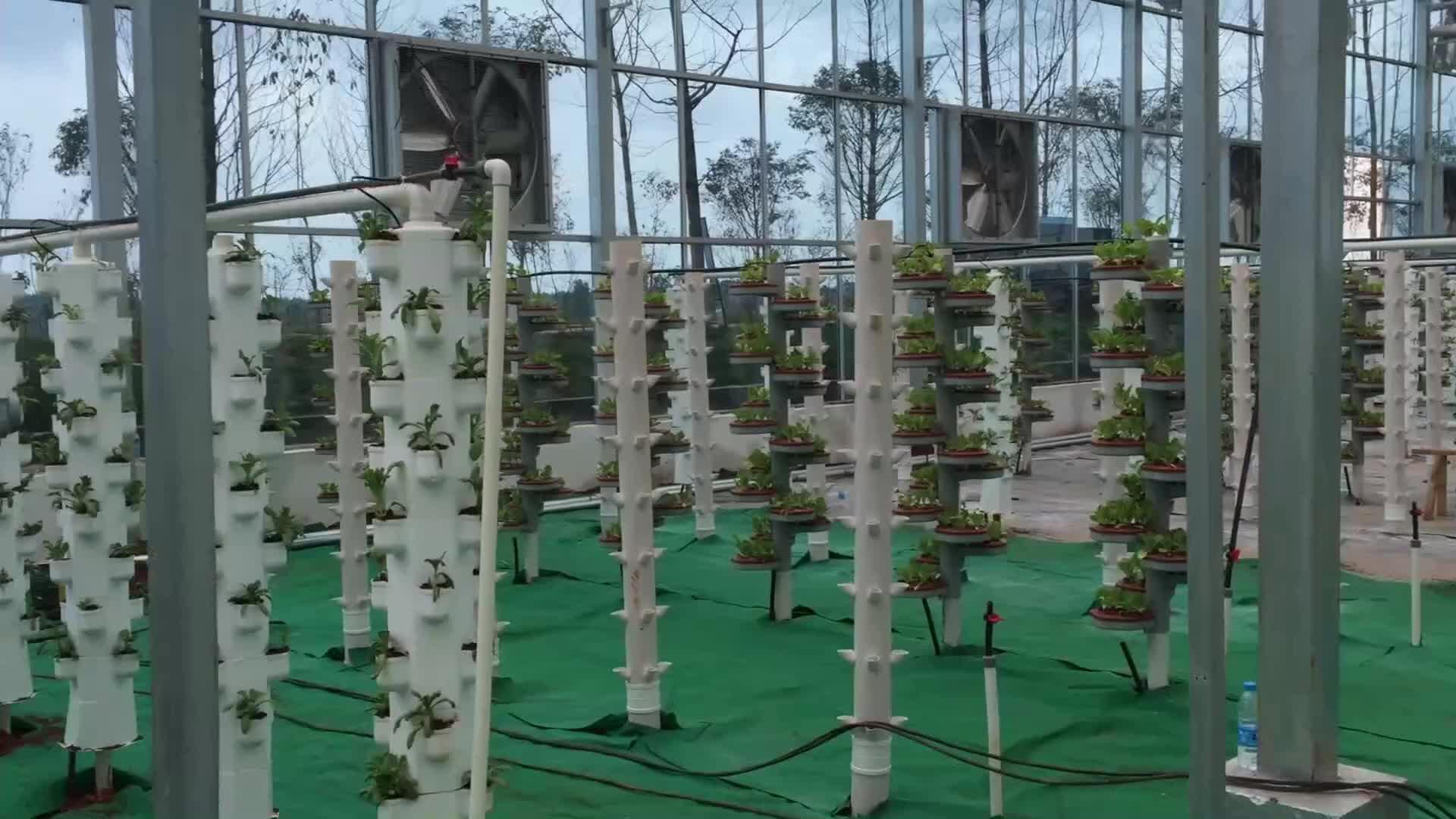 大棚阳台家庭无土栽培蔬菜种植 基质水培二元培种植 城市无土栽培