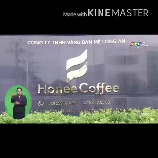 Honee Coffee - Vietnamese Freshly Roasted Arabica Coffee Beans - Best quality 2019