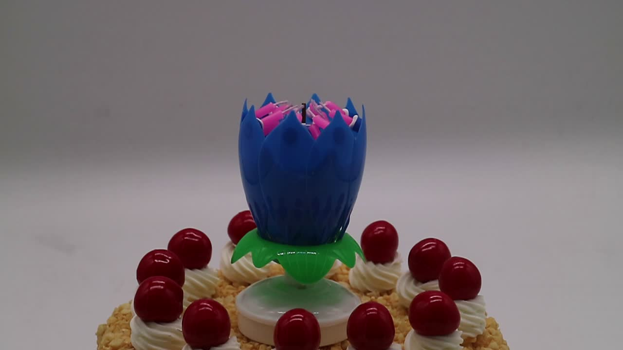 Multi-Colored Color and flower shaped rotating music birthday candle fireworks