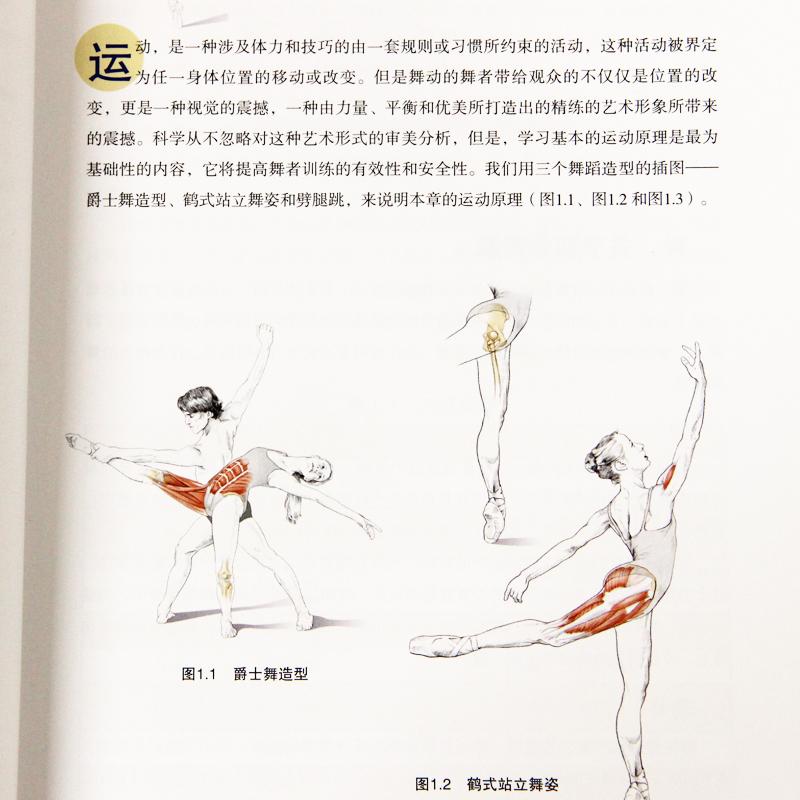 Usd 1429 Dance Anatomy Basics About Dance Anatomy Books Movements
