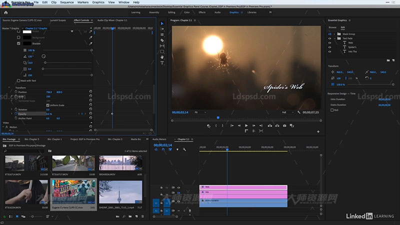 Creating Titles in Premiere with the Essential Gra.jpg