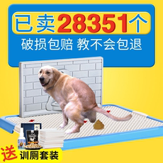 Dog toilet golden re...