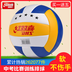 DHS charging soft volleyball No. 5 train students in the exam dedicated men and women beginners beach ball game ball