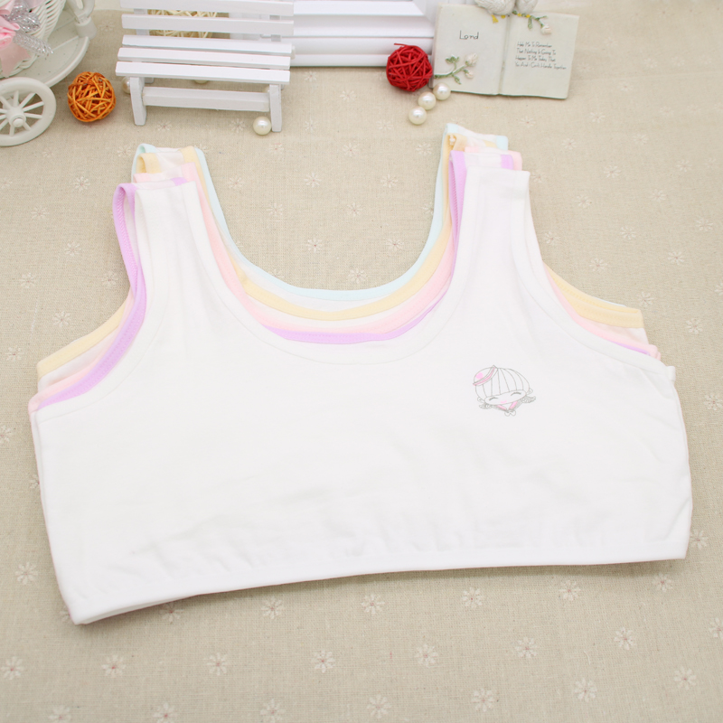 3e493ca515d92 Teenage adolescent thin section cotton girl development period bra summer girl  underwear student tube top vest