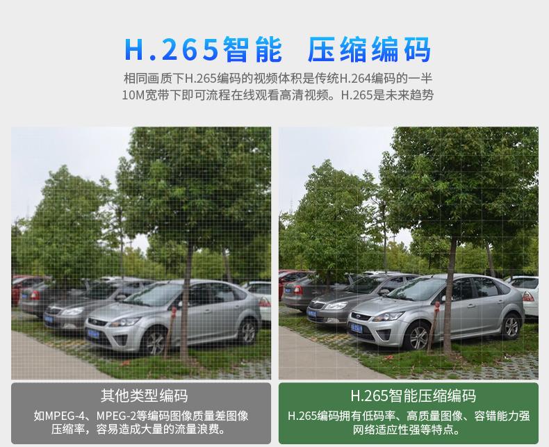 DH-IPC-HDB4233C-SA_04.jpg