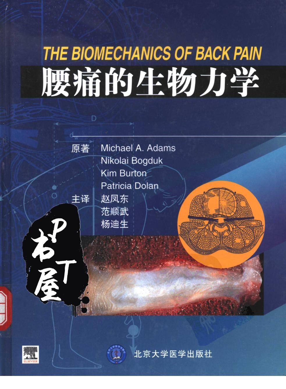 腰痛的生物力学 Book Cover